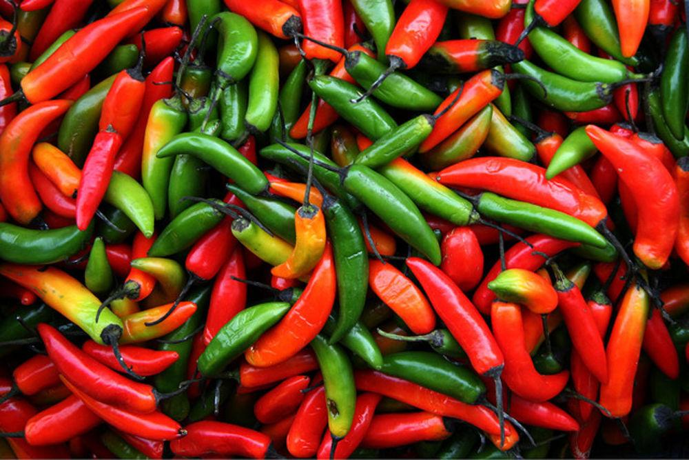 chili appetitt