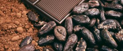 kakaopulver.jpg